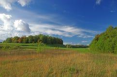μπλε νεφελώδες πτώσης πεδίων δέντρο ουρανού τοπίων μόνο κίτρινο Στοκ εικόνα με δικαίωμα ελεύθερης χρήσης