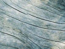 Μπλε ξύλινη στενή επάνω φωτογραφία σύστασης Λευκό και ξύλινο υπόβαθρο κιρκιριών Στοκ Φωτογραφία