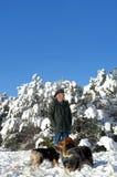 Μπλε ουρανοί και χιόνι Νέων Μεξικό Στοκ φωτογραφία με δικαίωμα ελεύθερης χρήσης