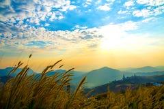 Μπλε ουρανού tvee βουνών στοκ φωτογραφία