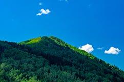 Μπλε ουρανός, άσπρα σύννεφα, πράσινα βουνά Altai το μεσημέρι Στοκ Φωτογραφία