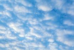 μπλε ουρανός ανασκόπησης Στοκ Εικόνες