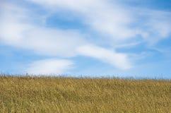 Μπλε ουρανός επάνω από το λόφο που καλύπτεται με την ξηρά χλόη λιβαδιών στο οροπέδιο Pester Στοκ εικόνες με δικαίωμα ελεύθερης χρήσης
