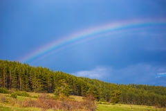 Μπλε ουρανός με το ουράνιο τόξο πέρα από τα δέντρα Πολύ φωτεινό ουράνιο τόξο με το φ Στοκ φωτογραφία με δικαίωμα ελεύθερης χρήσης