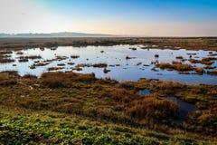Μπλε ουρανός μια ηλιόλουστη ημέρα στο βόρειο Norfolk, Αγγλία Στοκ φωτογραφία με δικαίωμα ελεύθερης χρήσης