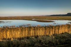 Μπλε ουρανός μια ηλιόλουστη ημέρα στο βόρειο Norfolk, Αγγλία Στοκ Φωτογραφίες