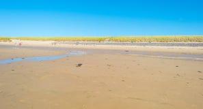 Μπλε ουρανός πέρα από μια παραλία κατά μήκος της θάλασσας Στοκ φωτογραφία με δικαίωμα ελεύθερης χρήσης