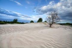 Μπλε ουρανός πέρα από τον αμμόλοφο άμμου Στοκ εικόνα με δικαίωμα ελεύθερης χρήσης