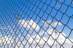 Μπλε ουρανός πίσω από τον οδοντωτό - καλώδιο - φράκτη με το αθλητικό φως Στοκ εικόνα με δικαίωμα ελεύθερης χρήσης