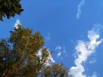 Μπλε ουρανός της βόρειας Ντακότας Στοκ Φωτογραφίες