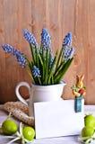 Μπλε λουλούδια muscari Στοκ Φωτογραφία