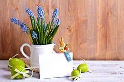 Μπλε λουλούδια muscari Στοκ Εικόνες