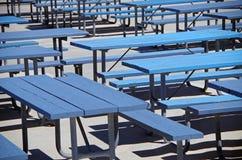 Μπλε πάγκοι πικ-νίκ Στοκ Εικόνες