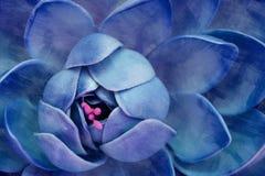 Μπλε πέταλα με τη σύσταση κτυπημάτων χρωμάτων Στοκ Εικόνες