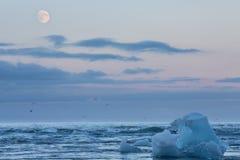 Μπλε παγόβουνα στην παραλία Στοκ φωτογραφίες με δικαίωμα ελεύθερης χρήσης