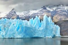 Μπλε παγόβουνα στον γκρίζο παγετώνα Torres del Paine Στοκ Φωτογραφία