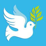 Μπλε περιστεριών ειρήνης Στοκ εικόνα με δικαίωμα ελεύθερης χρήσης