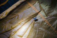 Μπλε πεταλούδα σε μια σκηνή Στοκ εικόνες με δικαίωμα ελεύθερης χρήσης