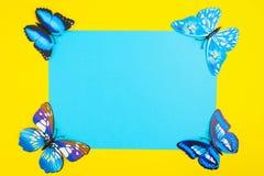 Μπλε πεταλούδα στο κίτρινο υπόβαθρο με το μπλε έγγραφο με το αντίγραφο SP Στοκ φωτογραφία με δικαίωμα ελεύθερης χρήσης