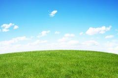 μπλε πράσινος ουρανός πεδίων Στοκ Εικόνα
