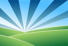 μπλε πράσινος ουρανός πεδίων διανυσματική απεικόνιση