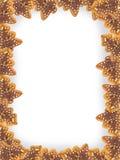 μπλε πλαίσιο Χριστουγένν στοκ φωτογραφία με δικαίωμα ελεύθερης χρήσης