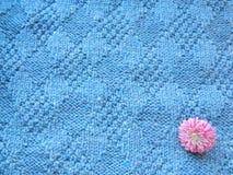 Μπλε πλεγμένο κάλυμμα Στοκ Εικόνες