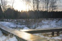 μπλε ραβδί χιονιού ουραν&o Στοκ εικόνες με δικαίωμα ελεύθερης χρήσης