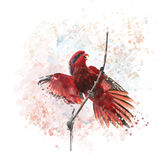 Μπλε-ραβδωμένο watercolor παπαγάλων Lory Στοκ εικόνες με δικαίωμα ελεύθερης χρήσης