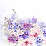 Μπλε, ρόδινα και πορφυρά cornflowers υποβάθρου Στοκ εικόνες με δικαίωμα ελεύθερης χρήσης