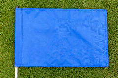 Μπλε σημαία που τοποθετείται στο πράσινο υπόβαθρο χλόης στοκ φωτογραφία