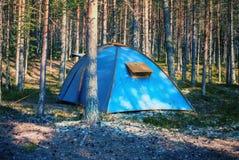 Μπλε σκηνή σε ένα θερινό δάσος Στοκ Φωτογραφίες