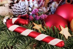 μπλε σκιά διακοσμήσεων απεικόνισης λουλουδιών Χριστουγέννων Στοκ Φωτογραφία