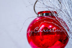 μπλε σκιά διακοσμήσεων απεικόνισης λουλουδιών Χριστουγέννων Στοκ εικόνα με δικαίωμα ελεύθερης χρήσης