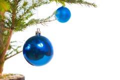 Μπλε σφαίρες διακοπών στο χριστουγεννιάτικο δέντρο Στοκ εικόνες με δικαίωμα ελεύθερης χρήσης
