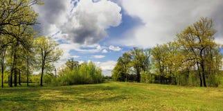 μπλε σύννεφων πλήρες πράσινο τοπίο εστίασης πεδίων ημέρας οφειλόμενο λίγη μετακίνηση όχι εμφανίζει στον ουρανό κάποια άνοιξη που  Στοκ Φωτογραφίες