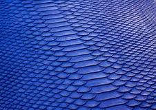Μπλε σύσταση δέρματος python στοκ φωτογραφία με δικαίωμα ελεύθερης χρήσης