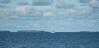 Μπλε Ταλίν ΙΙ Στοκ Εικόνα