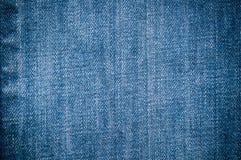 μπλε τζιν τζιν Στοκ Φωτογραφίες