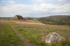 Μπλε τοπίο κουδουνιών Dartmoor Στοκ εικόνες με δικαίωμα ελεύθερης χρήσης