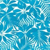 Μπλε τροπικό άνευ ραφής σχέδιο φύλλων Στοκ εικόνες με δικαίωμα ελεύθερης χρήσης