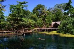 Μπλε τρύπα στο νησί Espiritu Santo, Βανουάτου στοκ εικόνες με δικαίωμα ελεύθερης χρήσης