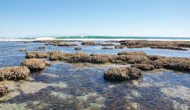 Μπλε τρύπες: Ακτή κοραλλιών Στοκ Εικόνα