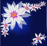Μπλε υπόβαθρο λουλουδιών για τα προγράμματα τέχνης Στοκ εικόνα με δικαίωμα ελεύθερης χρήσης