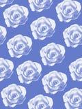 Μπλε υπόβαθρο τριαντάφυλλων Στοκ Φωτογραφίες