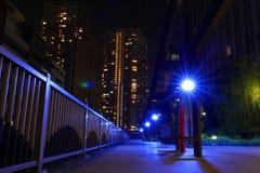 Μπλε φωτισμοί λαμπτήρων οδών στο πάρκο τη νύχτα στοκ εικόνες