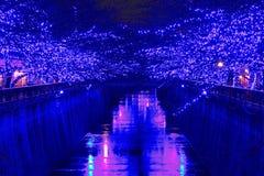 Μπλε φωτισμός Χριστουγέννων του Τόκιο στοκ εικόνα με δικαίωμα ελεύθερης χρήσης