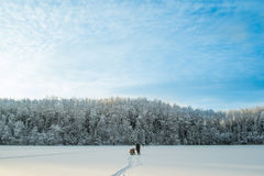 μπλε χειμώνας ουρανού το Στοκ εικόνες με δικαίωμα ελεύθερης χρήσης