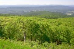 Μπλε λόφοι και κοιλάδα κορυφογραμμών Στοκ Εικόνα