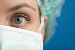 Μπλε eyed νοσοκόμα Στοκ Εικόνες